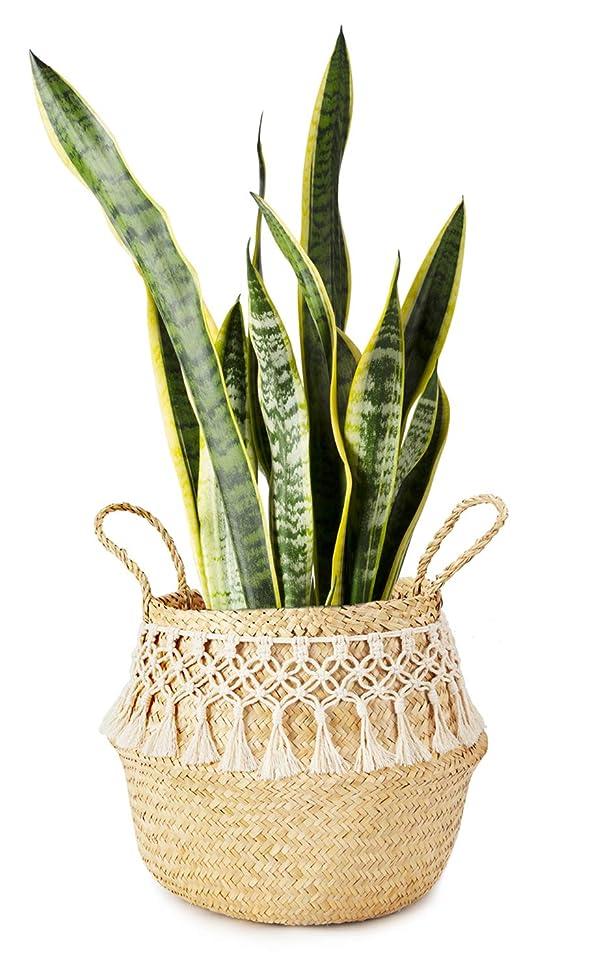 Mkono Seagrass Plant Basket Indoor Planter Decorative Flower Pot Cover Up to 10 Inch Pot with Macrame Wrap, M knrntsbaypoila