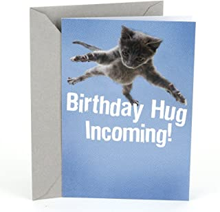 Hallmark Shoebox Funny Birthday Card (Flying Cat)