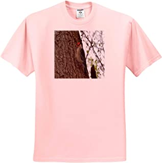 Adult T-Shirt XL Birds ts/_314310 3dRose Dreamscapes by Leslie White Breasted Nuthatch