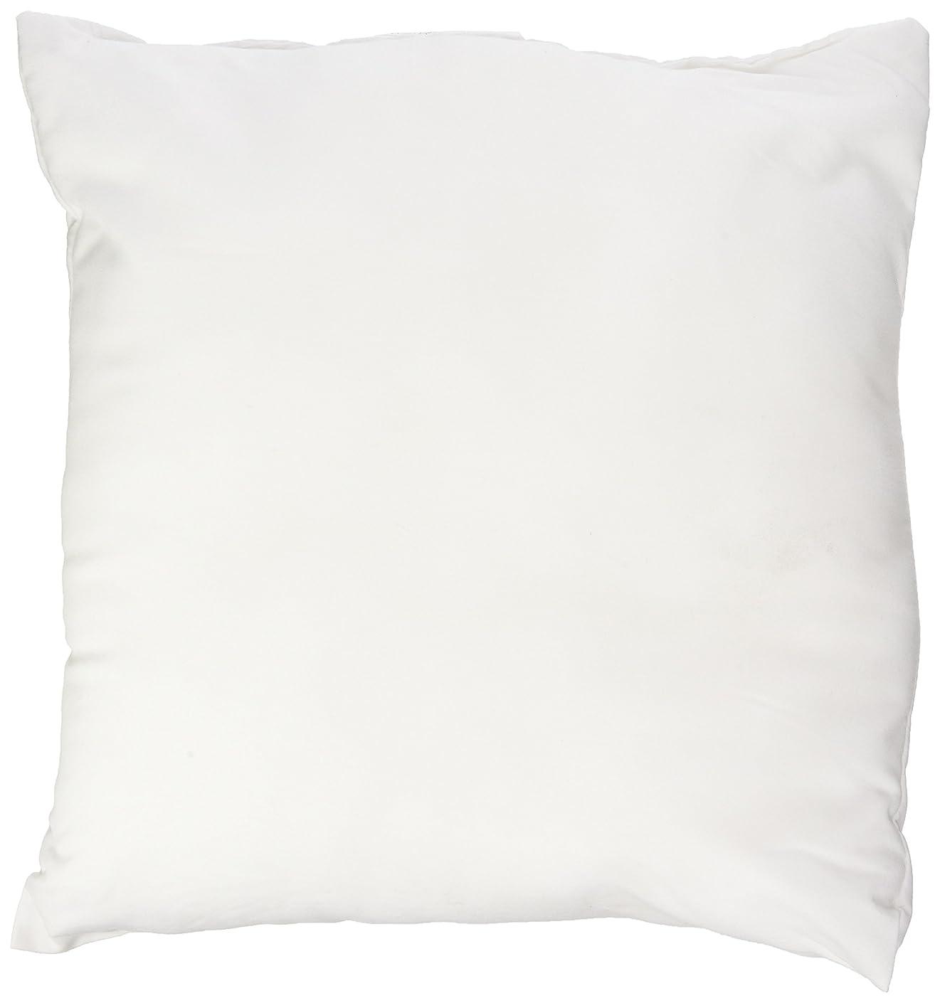 Pellon PPI12x12 Decorative Pillow Form, 12