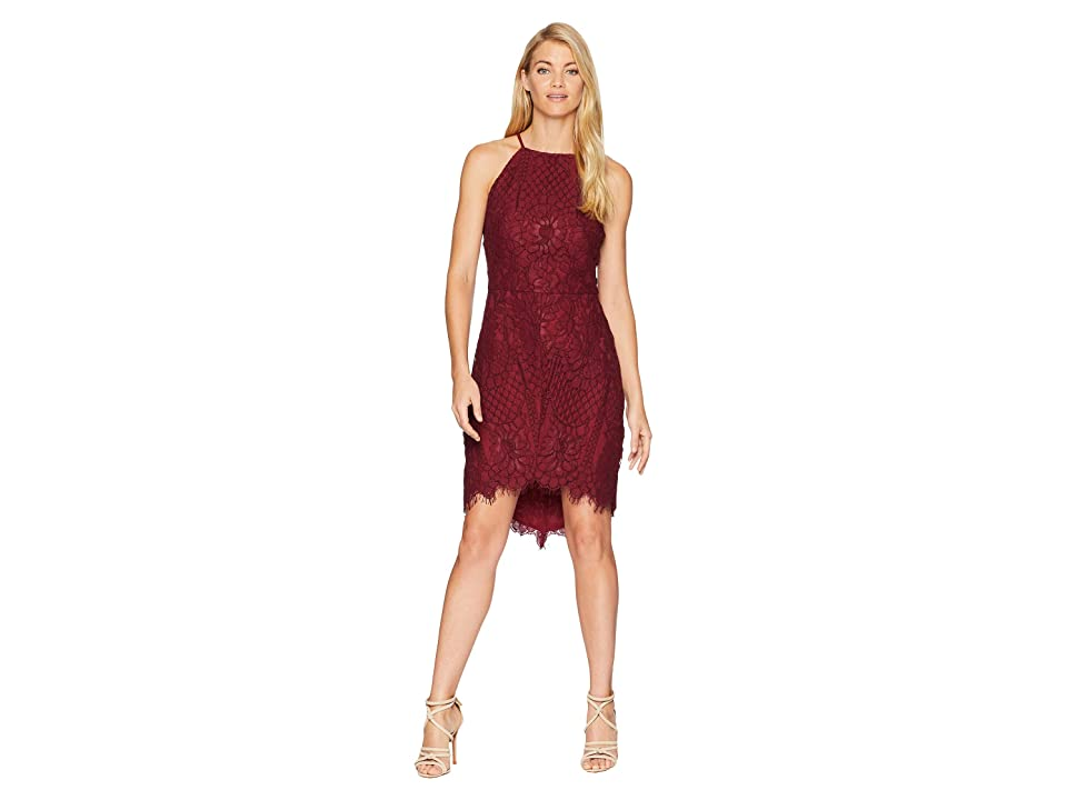 Adelyn Rae Juliet Woven Lace Sheath Dress (Wine) Women
