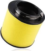 350 Air Filter Fit for Honda Rancher TRX350 TRX350FE TRX350FM 2x4 4x4 2000 2001 2002 2003 2004 2005 2006 Replacce 17254-HN5-670