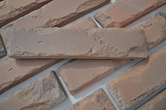 24 pcs MOLDS Antique Brick Veneer for Concrete Plaster Wall Brick Tiles #W08