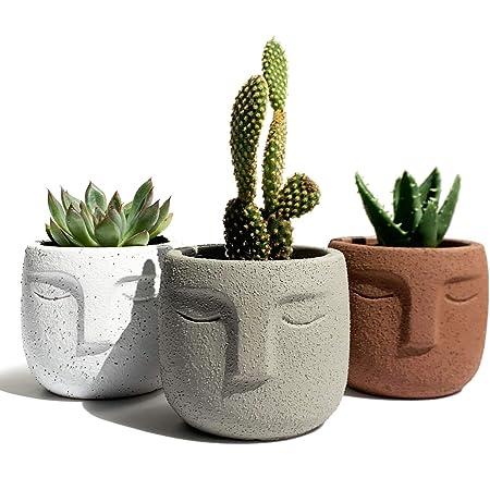 Concrete plant pot  Succulent pot  Modern pot  Housewarming gift
