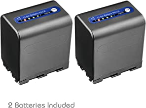 Kastar Battery 2-Pack for Sony NP-QM91D NP-QM91 and Sony DCR-TRV10 DCR-TRV11 DCR-TRV116 DCR-TRV12 DCR-TRV14 DCR-TRV140 DCR-TRV145 DCR-TRV147 DCR-TRV15 DCR-TRV16 DCR-TRV17 DCR-TRV18 DCR-TRV19 DCR-TRV20