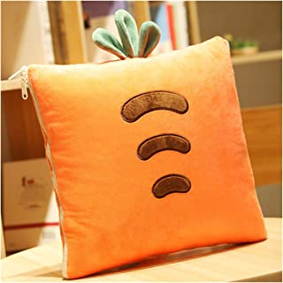 BRQ- Pillow quilt, Office Cushion Sofa Living Room Cute Pillow Quilt Dual-use Pillow Blanket Two-in-One -Birthday Gift (Co...