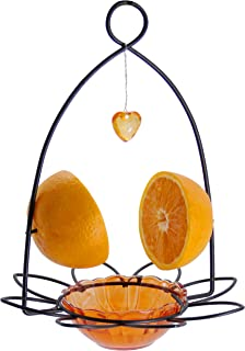 FORUP Oriole Bird Feeder, Orange Fruit Oriole Feeder