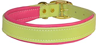 Perri's DC100 Padded Leather Dog Collar, X-Small, Mint/Pink