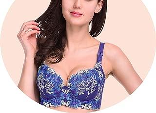 Women Bra Female Sexy Lingerie Sujetadores Push Up Embroidery Seamless Underwear Renda Bras,Blue,C,38