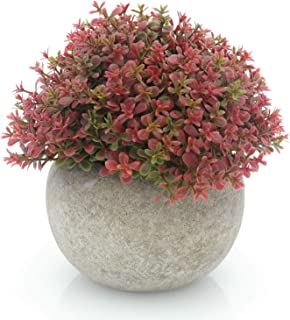 Best red fake plants Reviews
