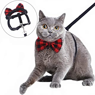 Best cat harness and lead set Reviews