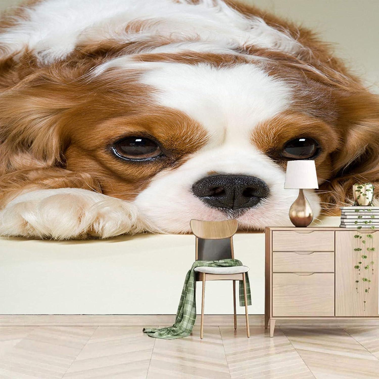 XiaoCha Cute Stylish Animal Dog Wall 3D Bargain sale Self-Adhesive Max 86% OFF Stickers