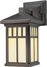 Westinghouse Lighting 6732800 Burnham One-Light Exterior Wall Lantern on Steel with Honey Art Glass, Oil Rubbed Bronze Finish, 1 Pack,