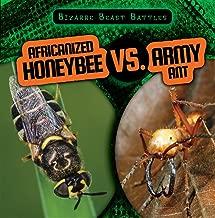 Africanized Honeybee Vs. Army Ant (Bizarre Beast Battles)