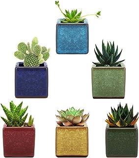 Lewondr Succulents Flowerpots, [6 Pack] 2.5 Inch Square Design Ceramic Ice Crack Serial Flower Pot Bonsai Plant Pots Plant...
