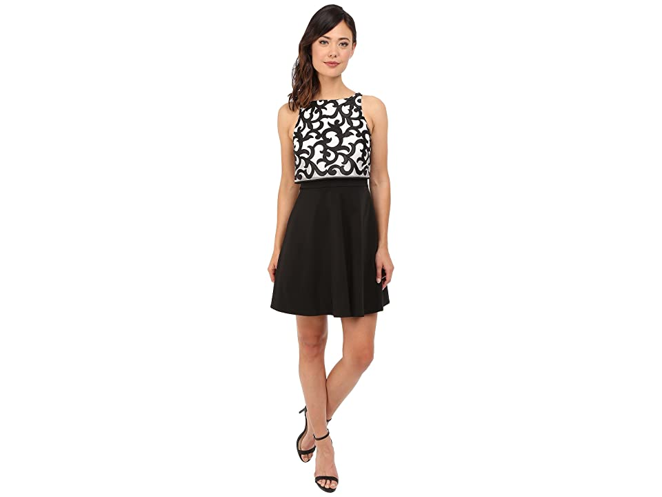 Aidan Mattox Popover Top Cocktail Dress with Embroidered Scroll Detail (Ivory/Black) Women