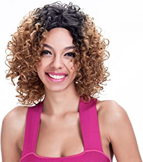 14Inch Short Afro Curly Ombre  Brown Lace Front Wigs for Black Women