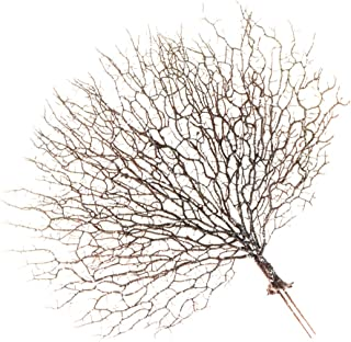 ITRR Deko-Zweig mit Moos; ca 70cm