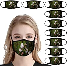 Viburnum Bodnantense / 10 PCS Reusable Breathable Earloop Dust Cover, Fashion, Fishing Cover, Sun Protection, Outdoor Cove...