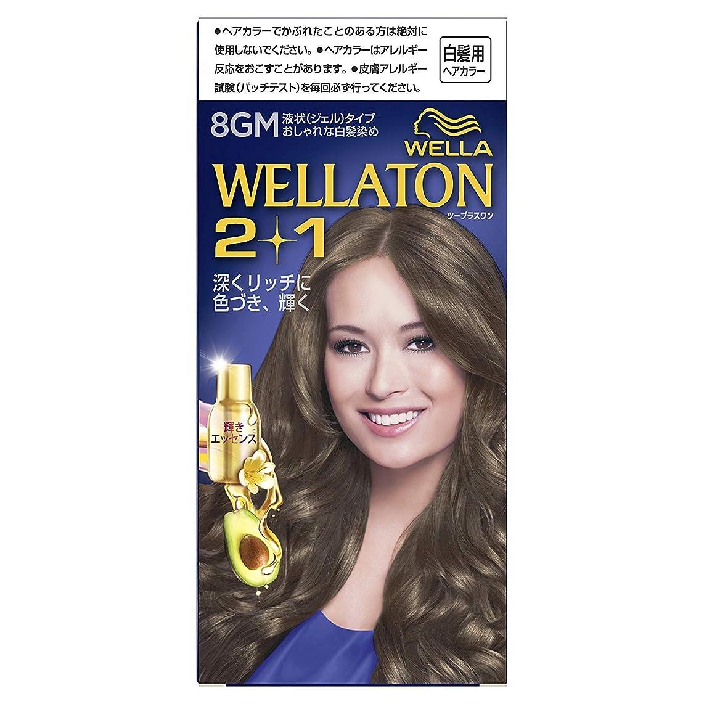 作ります先行する先行するウエラトーン2+1 液状タイプ 8GM [医薬部外品] ×6個