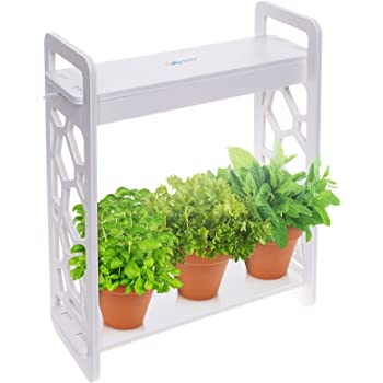 Mindful Design LED Indoor Herb Garden with Timer - at Home Mini Planter Kit for Herbs, Succulents, and Vegetables w/Hexagon Cutout (White)