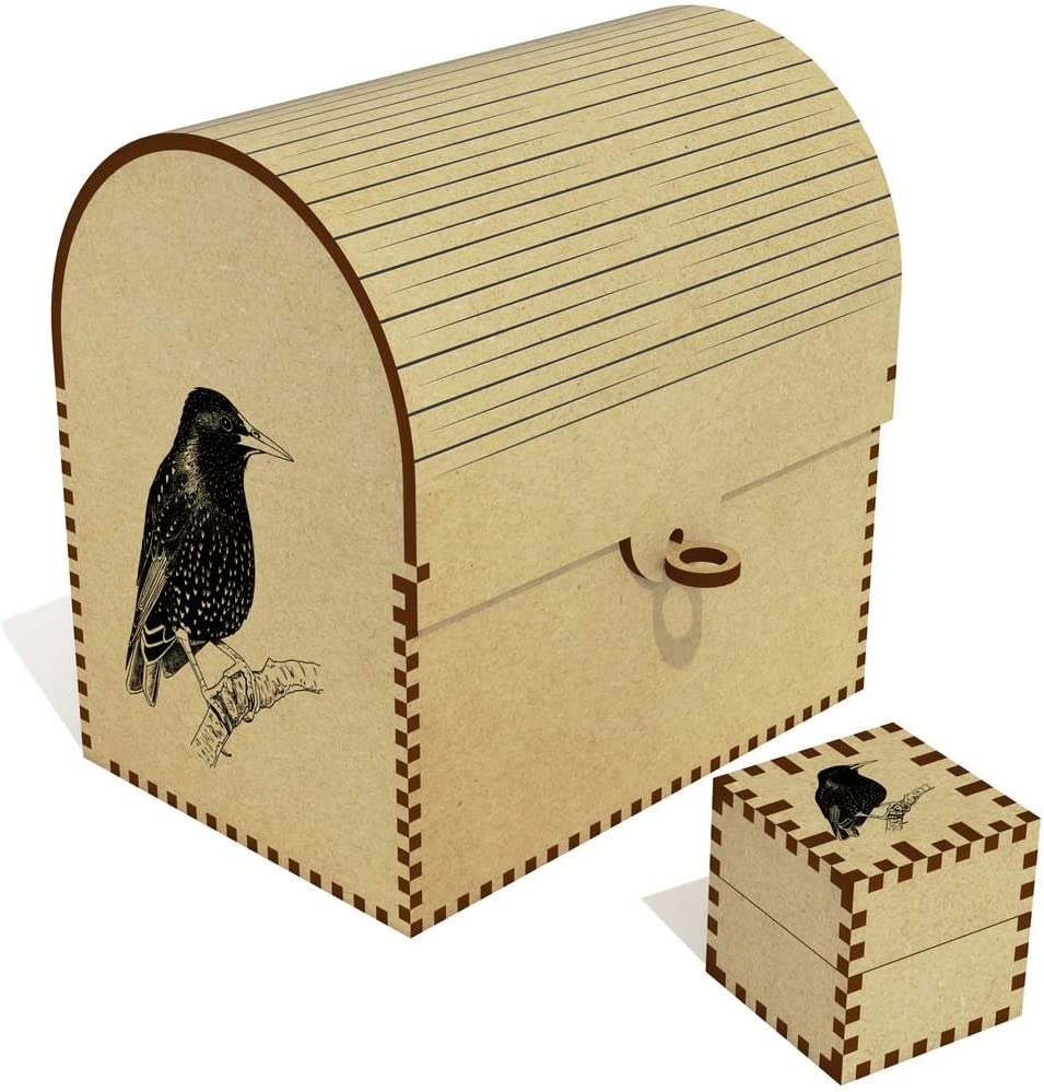 Special price for a limited time Azeeda 'Starling Bird' Treasure Chest Box Brand new Jewellery TC00024885