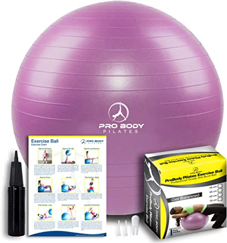ProBody Pilates Exercise Ball - Professional Grade Anti-Burst Fitness, Balance Ball for Pilates, Yoga, Birthing, Stab...