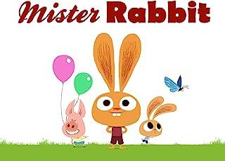 Mister Rabbit
