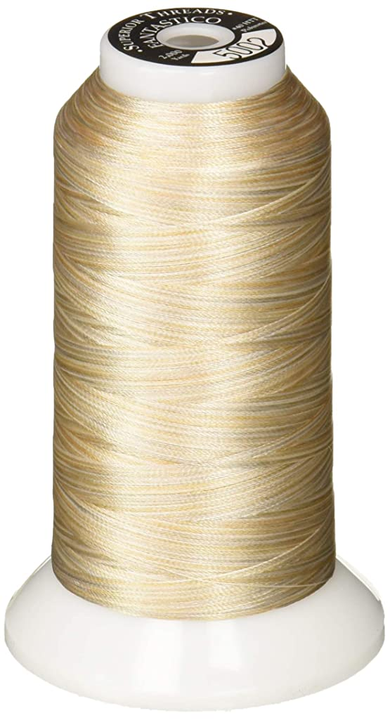 Superior Threads 11702-5002 Fantastico Variegated Trilobal Polyester 2000yd Marble Thread, 2,000 Yds,