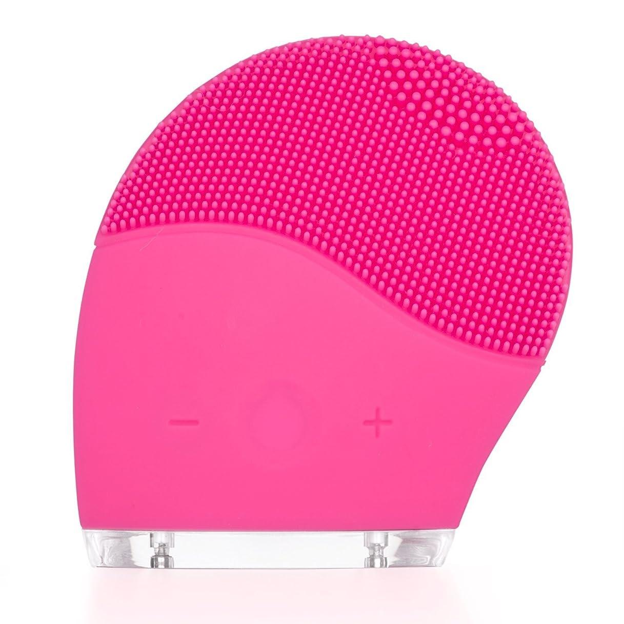安心させる特別に水Dazers 音波洗顔 電動 洗顔ブラシ 高級シリコン クレンジング 洗顔器 防水 充電式 毛穴ケア スピード調節でき 顔部マッサージ (ローズピンク) プレゼント