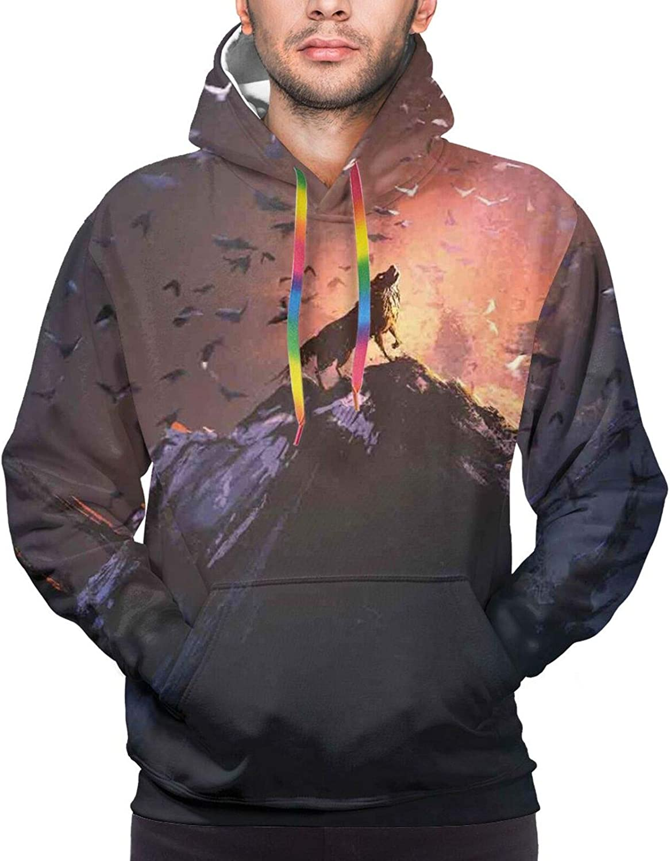 Men's Hoodies Sweatshirts,Hovering Swallow Birds Flying Dandelion Petals Dry Flowers Cloudy Sky