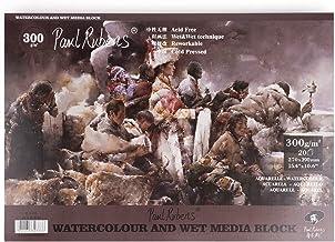 Paul Rubens Watercolor Paper Block Cold Press 15.4 10.6 Inches, 20 Sheets, Acid-Free, 50% Cotton Watercolor Paper Pad