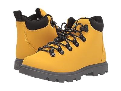 Native Kids Shoes Fitzsimmons Treklite (Little Kid) (Alpine Yellow/Dublin Grey) Kid