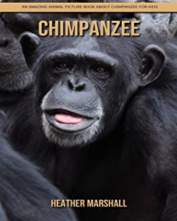 Chimpanzee: An Amazing Animal Picture Book about Chimpanzee for Kids