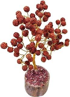 Crocon Rudraksha Beads Tree Feng Shui Bonsai for Chakra Balancing Reiki Healing Protection Energy Generator Spiritual Meditation Wealth Good Luck Home Office Decor Gift Size: 7-8 Inch