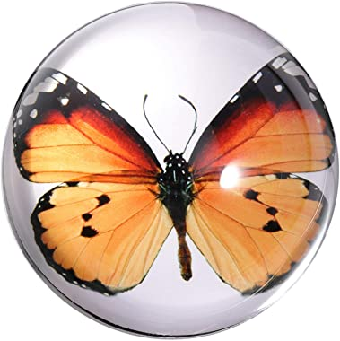 Waltz&F Crystal Orange Butterfly Paperweight Galss Globe Hemisphere Home Office Table Decoration 2.7''