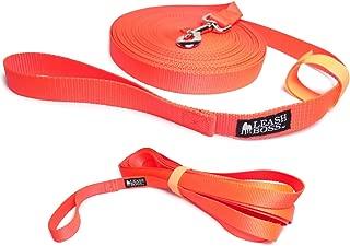 Leashboss Long Trainer - 1 Inch Nylon Long Dog Training Leash with Storage Strap