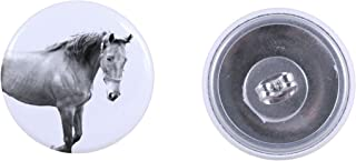 American Saddlebred, earrings with a horse