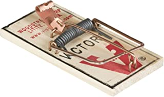 Victor M154 Metal Pedal Mouse Trap, Pack of 12