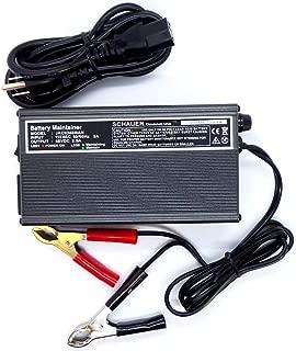 Golf Cart Battery Maintainer 48 Volt