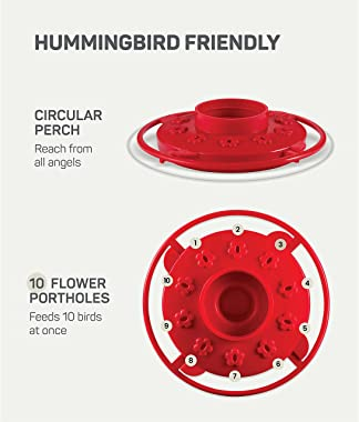 Hummingbird Feeder 16 oz [Set of 2] Plastic Hummingbird Feeders for Outdoors - Humming Bird Feeders - 10 Feeding Ports - Wide