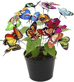 butterfly oasis foam