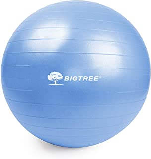 Bigtree Exercise Ball Extra Thick Yoga Ball Chair, Anti-Burst Heavy Duty Stability Ball, Birthing Ball with Quick Pump (Bl...