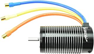 Best 1/8 scale brushless motor Reviews