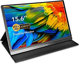 Portable Monitor - Lepow 15.6 Inch Computer Display 1920×1080 Full HD IPS Screen USB C Gaming Monitor with Type-C Mini HDMI for Laptop PC MAC Phone Xbox PS4, Include Smart Cover & Screen Protector