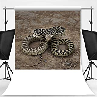Great Basin Gopher Snake Theme Backdrop Cartoon Backdrops Photography Backdrop,123809,10x20ft