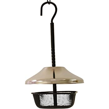 Wildlife Sciences Mealworms Bird Feeder | 5 x 5 inch Powder Coated Mesh Bowl with Adjustable Stainless Steel Roof
