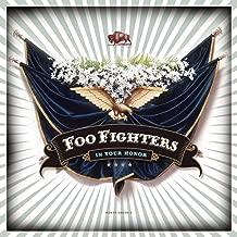 foo fighters virginia moon