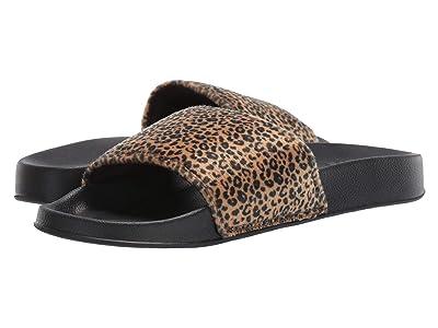 DC Slide TX SE (Cheetah Print) Women