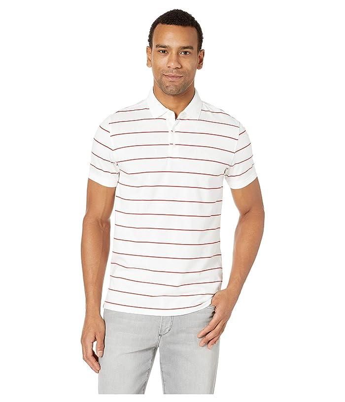 Calvin Klein Short Sleeve Striped Polo (White) Men